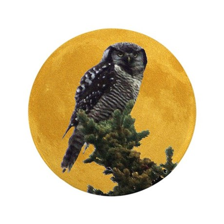 "Owl and Moon 3.5"" Button (100 pack)"