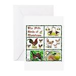 Christmas Birds Greeting Cards (Pk of 10)