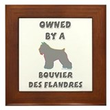 Bouvier Pewter Framed Tile
