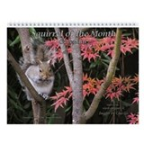 Cute Squirrel of the Month Wildlife Wall Calendar
