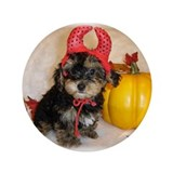 Yorkiepoo halloween 3.5&quot; Button