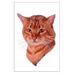 Bengal Tabby Cat Large Poster