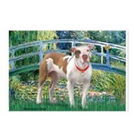 Bridge / Pitbull Postcards (Package of 8)