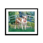 Bridge / Pitbull Framed Panel Print