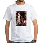 The Accolade / Pitbull White T-Shirt