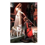 The Accolade / Pitbull Postcards (Package of 8)