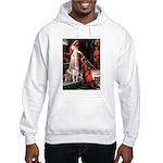 The Accolade / Pitbull Hooded Sweatshirt