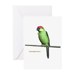 Thick Billed Parrot Greeting Card