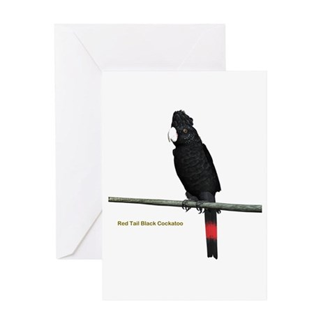 Red Tail Black Cockatoo Greeting Card