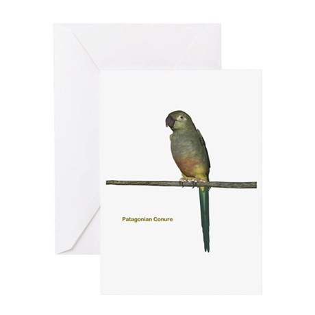 Patagonian Conure Greeting Card