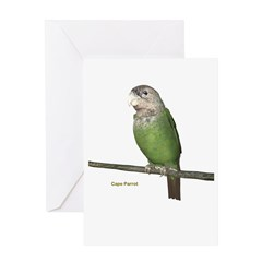 Cape Parrot Greeting Card