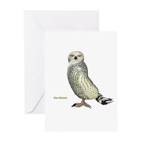 Snow Owl Greeting Card