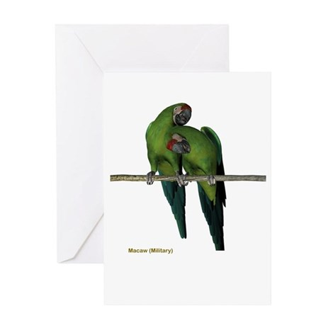 Military Macaw (pair) Greeting Card