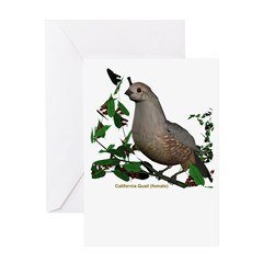 California Quail (female) Greeting Card