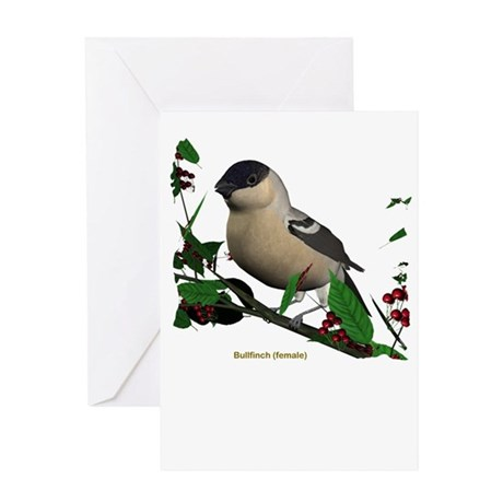 Bullfinch (female) Greeting Card