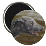 "Solo Irish Wolfhound 2.25"" Magnet (10 pack)"