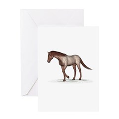 Horse (Strawberry Roan) Greeting Card