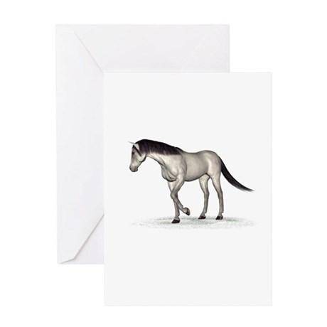 Horse (Grey) Greeting Card