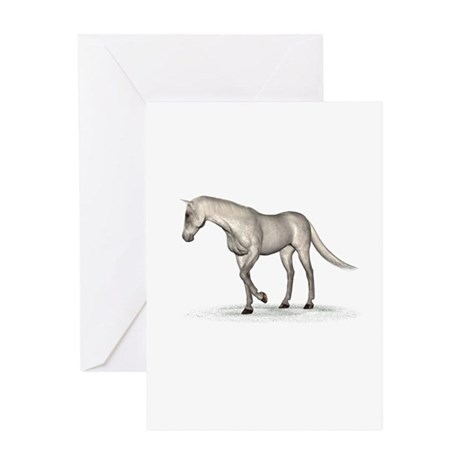 Horse (Fleabitten) Greeting Card