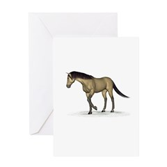 Horse (Dun) Greeting Card