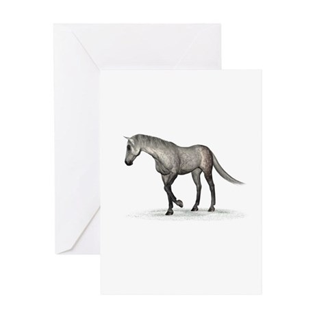 Horse (Dapple) Greeting Card