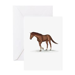 Horse (Chestnut) Greeting Card
