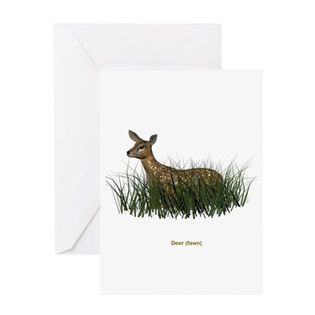 Deer (Fawn) Greeting Card