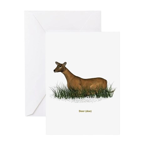 Deer (Doe) Greeting Card