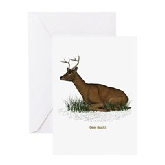 Deer (Buck) Greeting Card