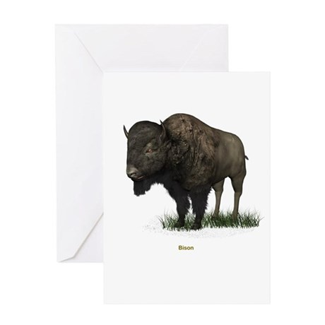 Bison (Buffalo) Greeting Card