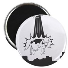 Cow Abduction Magnet