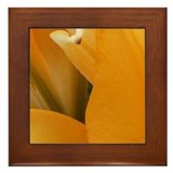 Daylily - lower Left Framed Tile