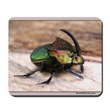 Dung Beetle Mousepad