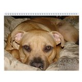 Pit Prints 2009 Wall Calendar