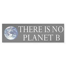 Earth Wave Bumper Sticker