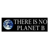 Ecology Bumper Bumper Sticker