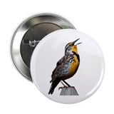 "Western Meadowlark 2.25"" Button"