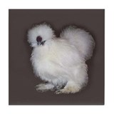 White Silkie Tile Coaster
