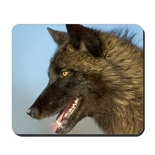 Black Wolf Closeup Mousepad