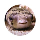Helaine's Blowfish (Pufferfish ) Ornament (Round)