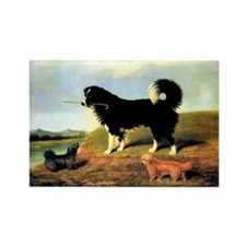 SPANIEL & NORFOLK Rectangle Magnet (10 pack)