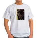 Stand Down Bison Light T-Shirt