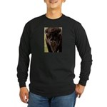 Stand Down Bison Long Sleeve Dark T-Shirt
