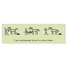 I am a Professional: Groom / Bumper Bumper Sticker
