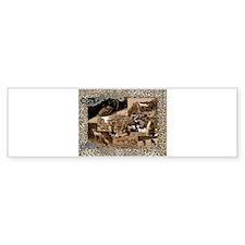 Colorado Critters Bumper Bumper Sticker
