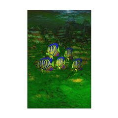 Angel Fish Mini Poster Print