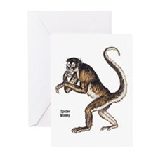 Spider Monkey Greeting Cards (Pk of 10)