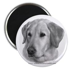 "Sam, Labrador Retriever 2.25"" Magnet (10 pack)"