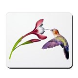 Hummingbird in flight Mousepad