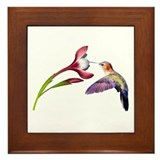 Hummingbird in flight Framed Tile